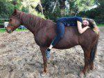 Coaching und Pferd