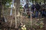 Baumpflanzaktion im Herbst 2019