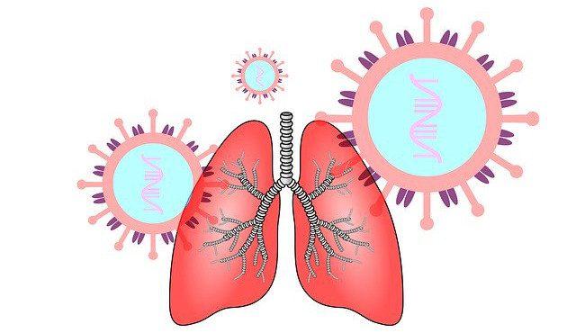 Lungenstärkung und Sicherheit vor Viren
